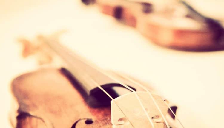 importancia del tamaño del violín